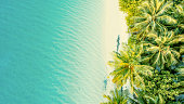 istock Aerial view of tropical island,Maldives 1094614496