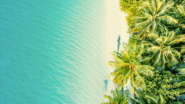Aerial view of tropical island,Maldives stock photo