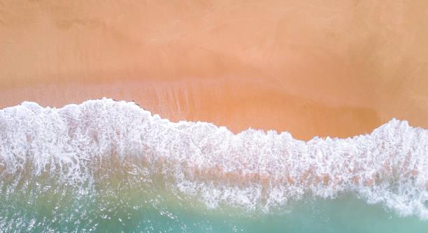 aerial view of tropical sandy beach and ocean. copy space - riva dell'acqua foto e immagini stock