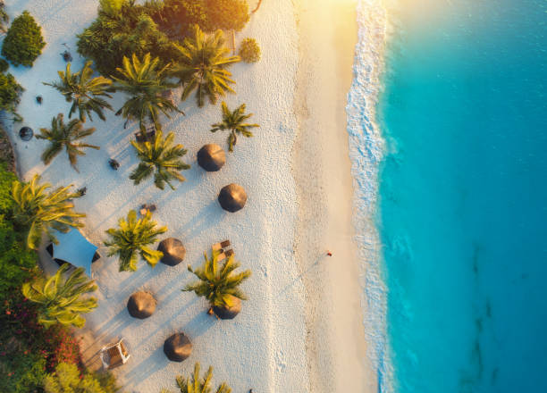 aerial view of umbrellas, palms on the sandy beach of indian ocean at sunset. summer holiday in zanzibar, africa. tropical landscape with palm trees, parasols, white sand, blue water, waves. top view - den belitsky foto e immagini stock