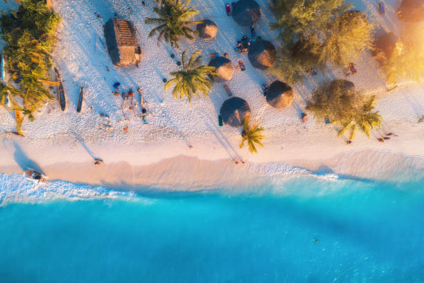 aerial view of umbrellas, palms on the sandy beach of indian ocean at sunset. summer travel in zanzibar, africa. tropical landscape with palm trees, parasols, people, sand, blue water, waves. top view - den belitsky foto e immagini stock