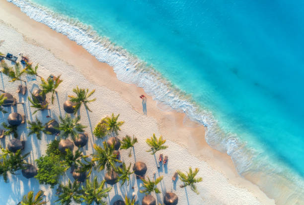 aerial view of umbrellas, palms on the sandy beach, people, blue sea with waves at sunset. summer holiday in zanzibar, africa. tropical landscape with palm trees, parasols, white sand, ocean. top view - den belitsky foto e immagini stock