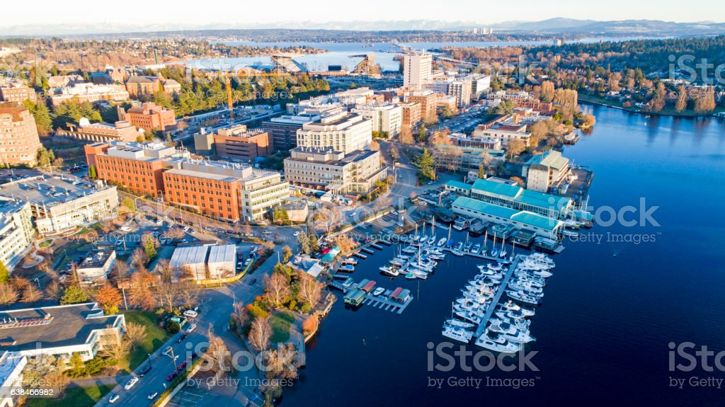 Aerial View of University of Washington Neighborhood School Campus 스톡 사진