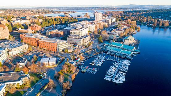 Aerial View Of University Of Washington Neighborhood School Campus Stock Photo - Download Image Now