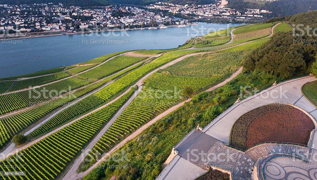 Aerial view of vineyards and River Rhine, Bingen stock photo