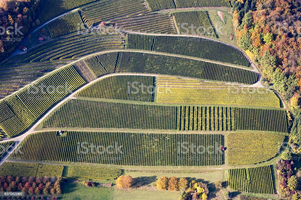 Aerial view of vineyards in Southern Germany stock photo
