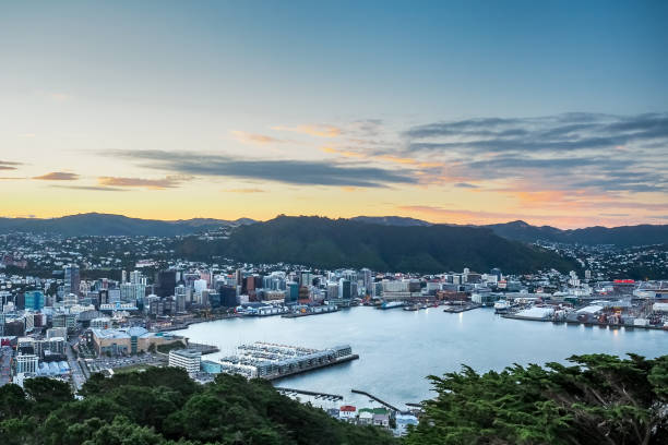 Aerial view of Wellington City with sunset from Mt Victoria  - New Zealand New Zealand wellington new zealand stock pictures, royalty-free photos & images