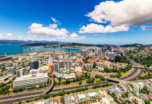 Aerial view of Wellington, New Zealand A high angle view of New Zealand's capital city, Wellington, located at the south of the country's North Island. mt victoria canadian rockies stock pictures, royalty-free photos & images