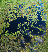 Aerial view of large wetland area.