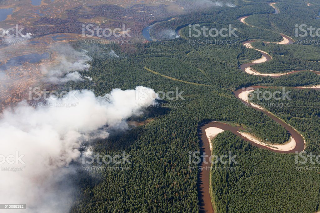 Aerial view of wildfire in forest stock photo
