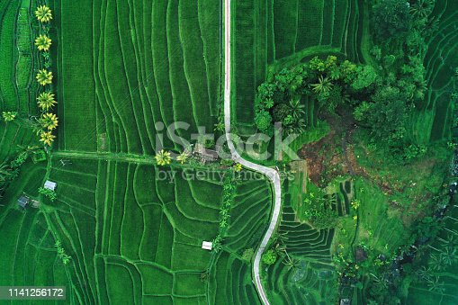 Winding road in Jatiluwih Rice Terraces. Beautiful green paddy fields. Сloudy and foggy weatherPhoto from drone. Bali, Indonesia.