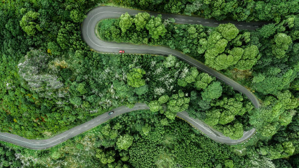 Aerial view of winding road trough the dense woods on the high mountain. stock photo