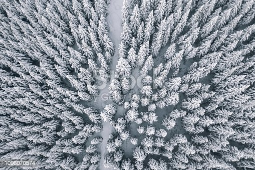 1141614053 istock photo Aerial view of winter forest covered in snow and frost 1096070874