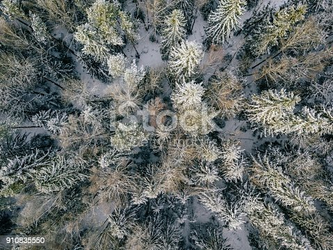 1141614053 istock photo aerial view of winter forest covered in snow and frost. 910835550