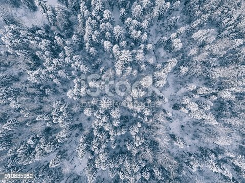1141614053 istock photo aerial view of winter forest covered in snow and frost. 910835982