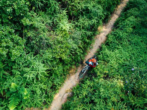Luftaufnahme einer Radfahrerin mit einem Mountainbike, die auf tropischem Wald spazieren geht – Foto
