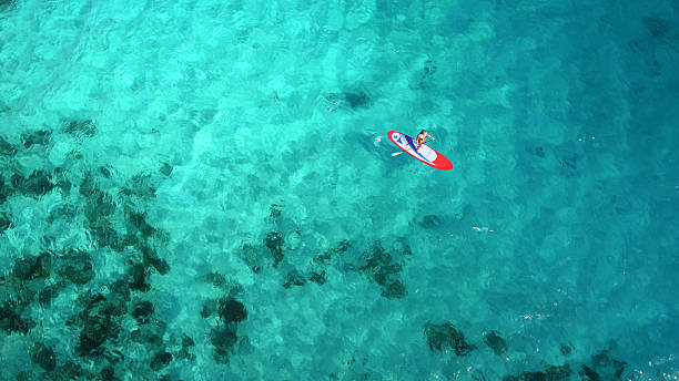 vista aérea de mulher na prancha de stand up paddle - esporte aquático - fotografias e filmes do acervo