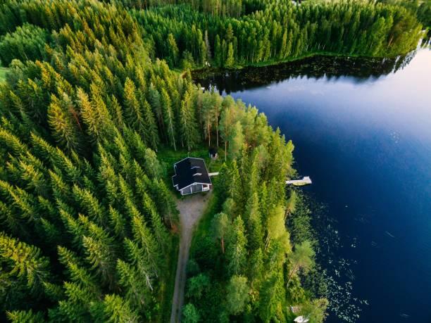 시골 여름 핀란드에에서 파란 호수 숲에 있는 나무 오두막의 항공 보기 - 핀란드 뉴스 사진 이미지