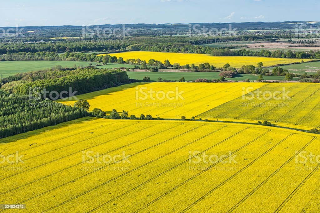 aerial view of yellow harvest fields stock photo