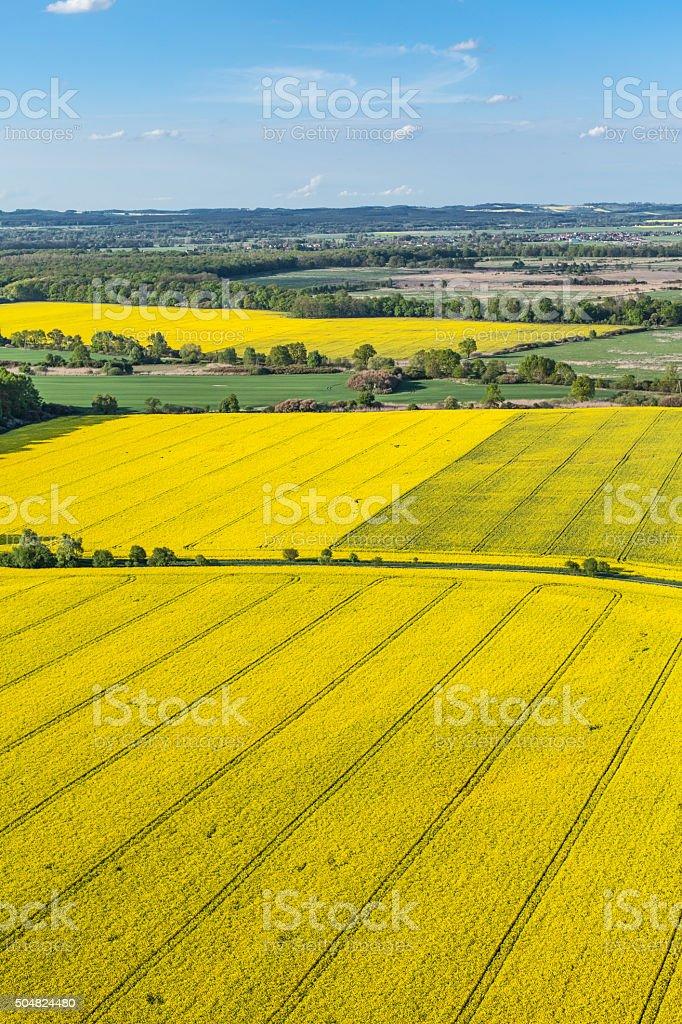 Vista aérea de amarillo harvest campos - foto de stock