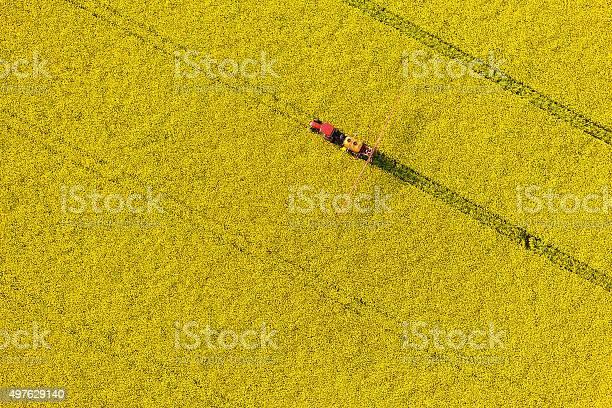 Aerial view of yellow rape harvest fields with tractor picture id497629140?b=1&k=6&m=497629140&s=612x612&h=nmimjc0958wwq ft ztz8jypweiegdzxkn yornhnx0=
