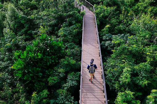 istock Aerial view of young man traveling and walking on the forest walkway trail - travel and recreation concept 865757448