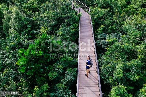 istock Aerial view of young man traveling and walking on the forest walkway trail - travel and recreation concept 871860808