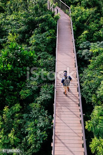 istock Aerial view of young man traveling and walking on the forest walkway trail - travel and recreation concept 871860830