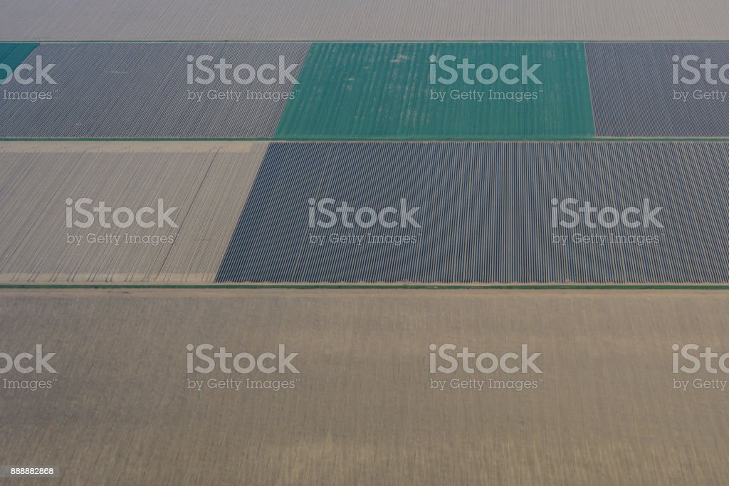 Aerial view on abstract agricultural landscape in Flevoland, The Netherlands stock photo