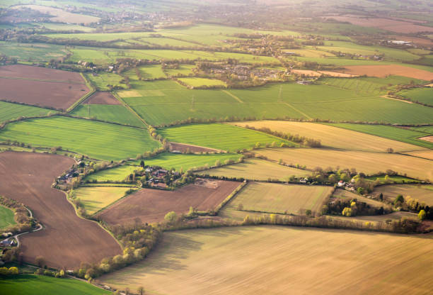 Aerial view on field plots in contrasting colours stock photo