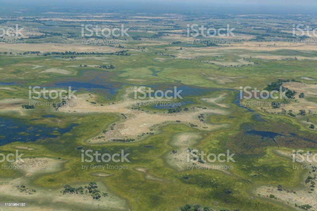 Luftaufnahme auf grüne Okavango-Delta-Landschaft – Foto