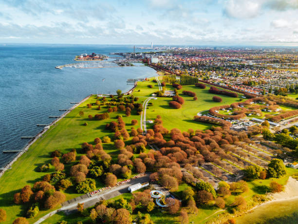 flygvy på park nära staden och havet - skåne bildbanksfoton och bilder