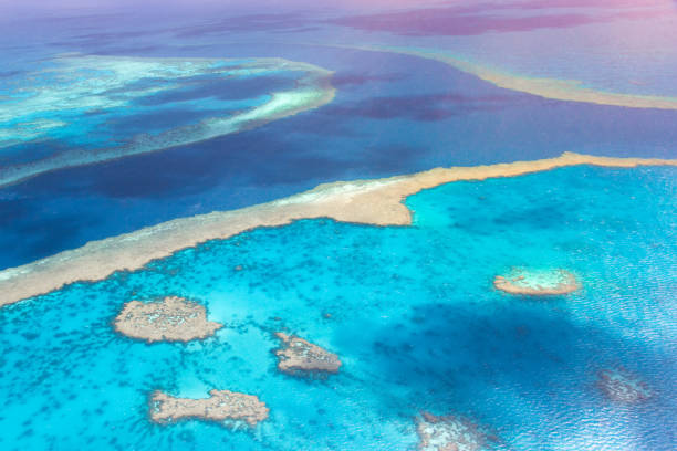 aerial view on sea channel through great barrier reef near airlie beach surrounded by shallow coral reef in turquise clear water. - great barrier reef marine park stock pictures, royalty-free photos & images