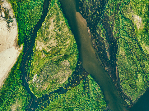 istock aerial view on the green islands of zambezi river 1135802251