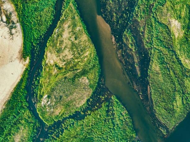 Luftaufnahme auf den grünen Inseln des Zambezi-Flusses – Foto