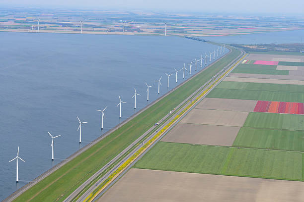 Aerial view on wind turbines with fields of tulip flowers​​​ foto
