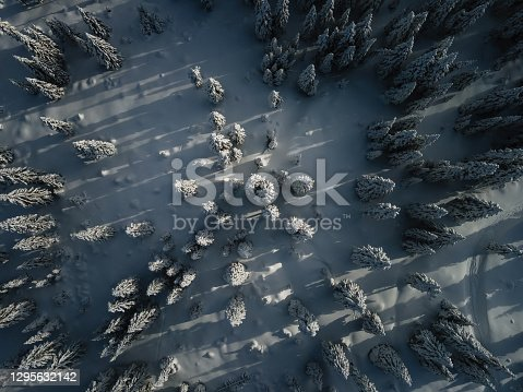 Snowcapped winter forest from above Slovenia.