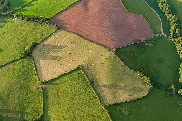 Aerial view over farm fields crops and hedgerows Patchwork quilt of vibrant green pasture, ploughed fields and farmland hedgerows from high above. ProPhoto RGB profile for maximum color fidelity and gamut. welsh culture stock pictures, royalty-free photos & images