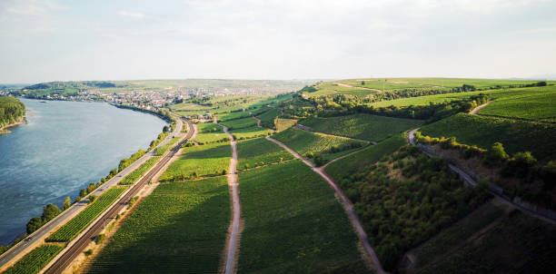 aerial view over rheinhessen drone footage of the beautiful region of rheinhessen central europe stock pictures, royalty-free photos & images