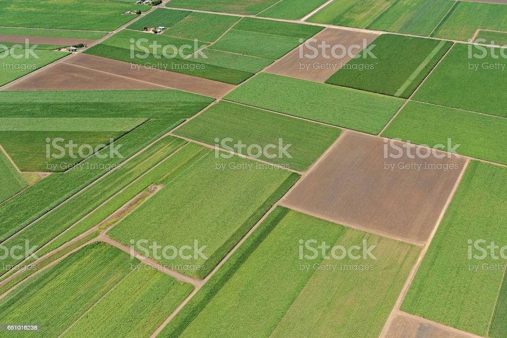 Aerial view over sugar cane field patterns near Ayr, North Queensland, Australia stock photo