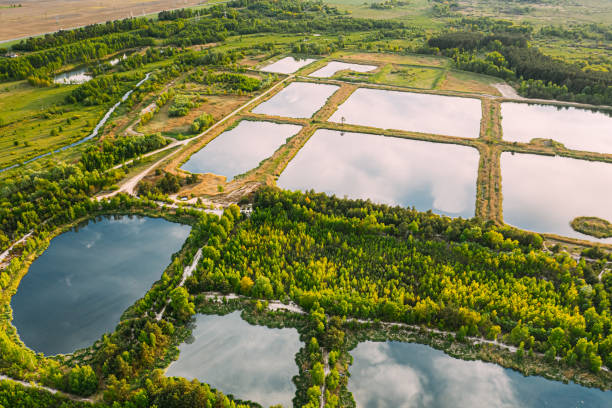 Aerial View Retention Basins, Wet Pond, Wet Detention Basin Or Stormwater Management Pond, Is An Artificial Pond With Vegetation Around The Perimeter, And Includes A Permanent Pool Of Water In Its Design stock photo