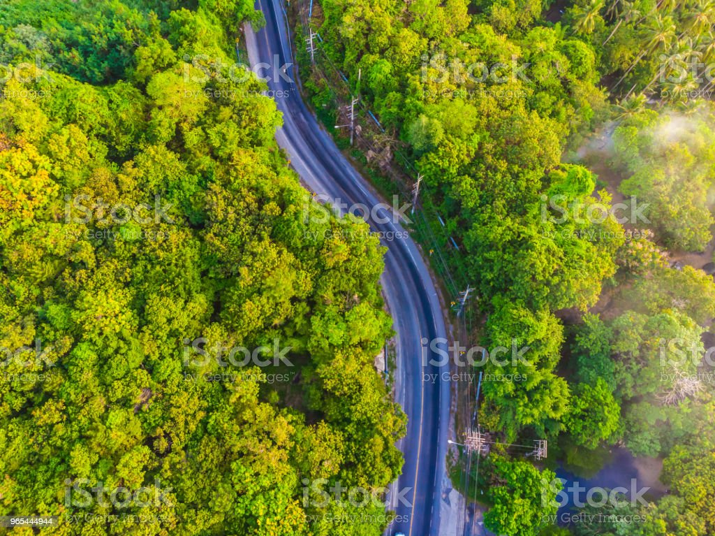 Aerial view road side in the forest zbiór zdjęć royalty-free