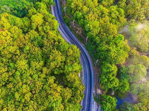 空中風景路邊在森林裡 照片檔及更多 在上面 照片