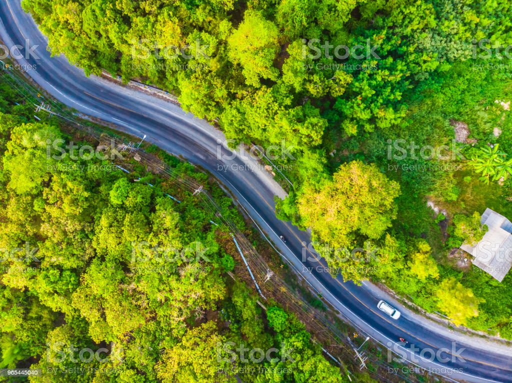 Aerial view road side in the forest royalty-free stock photo