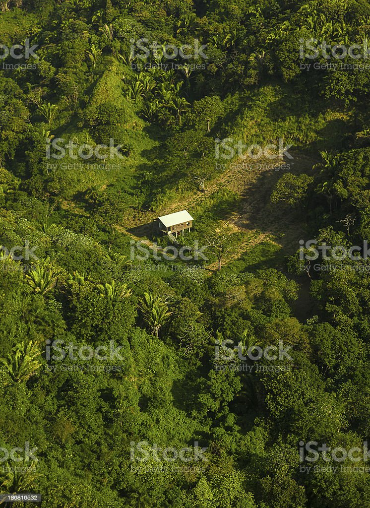 aerial view roatan island in honduras stock photo