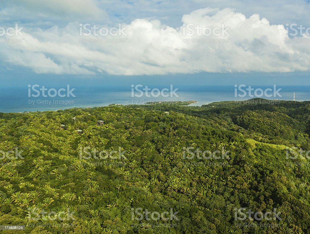 aerial view roatan island stock photo