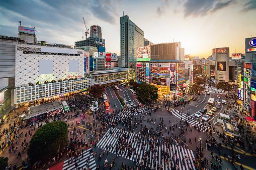 Aerial View Shibuya Crossing Tokyo Japan