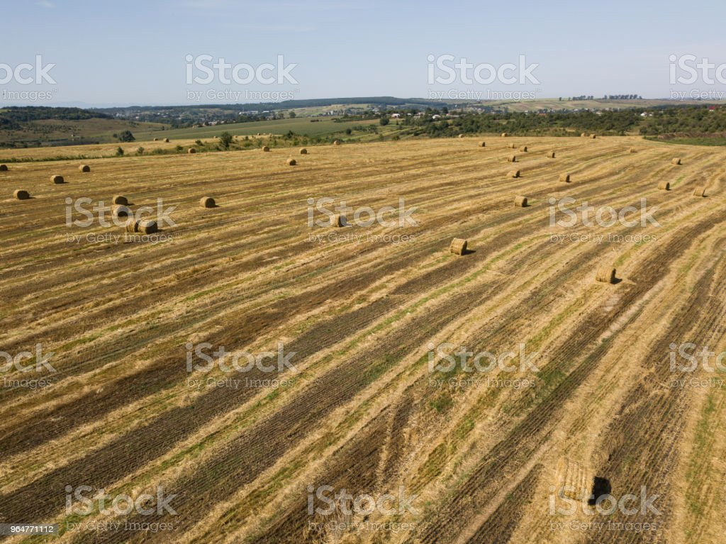 Aerial view to harvested field with straw bales in summer royalty-free stock photo