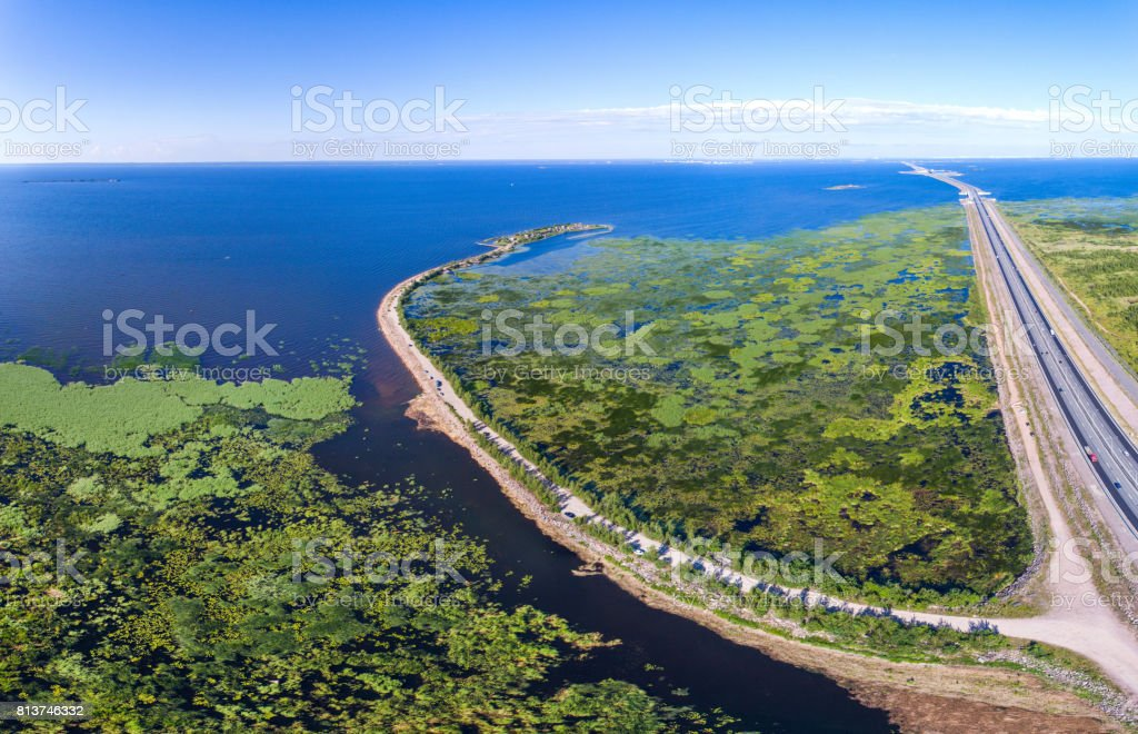 Aerial view to the road going on a reservoir of overgrown reeds and duckweed stock photo