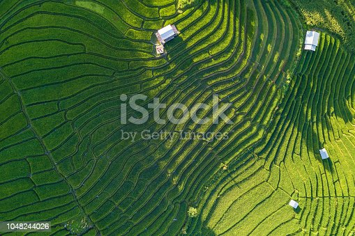 Aerial views of Small house and rice terraces field at pabongpaing village rice terraces Mae-Jam Chiang mai, Thailand